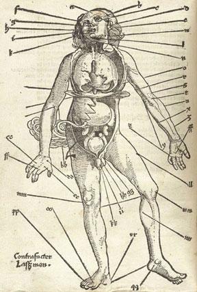 remedies_medical_chart