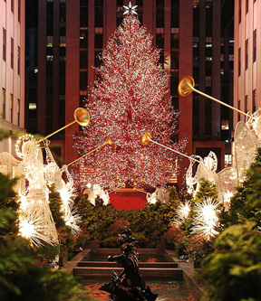 N.Y. City At Christmas