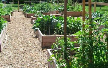 Il Giardino (The Garden)