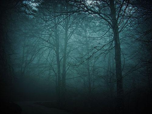 Were-Forest